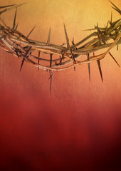 Crown of Thorns on Grunge Background Texture