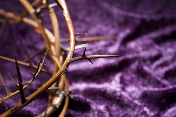 Crown of Thorns on Purple Background