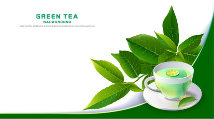 Green tea leaves vector nature background.