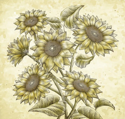 Retro Sunflower elements