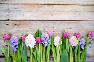 Frühlingsblumen - Blumengrüße Frühling