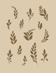 Stylized ears of corn or leaves. Silhouetted decorative plant elements on a light background.