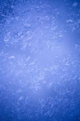 Icy flowers on a frozen window