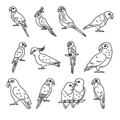 Set of parrot icons in thin line style