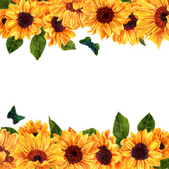 Watercolor yellow sunflowers on white background with copyspace