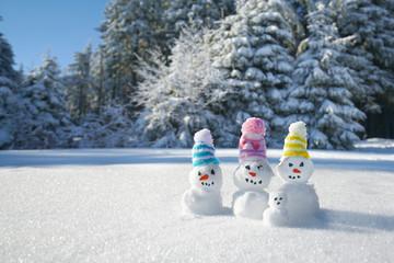 lustige Schneemänner im Winterwlad