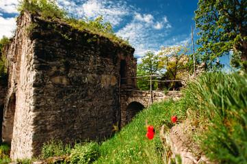 Photo sur Plexiglas Ruine Ujarma fortress, Kakheti, Georgia. The ruins of old castle with ancient bridge with paving stones.