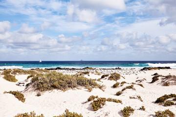 Sandy beach with coastal vegetation, Lanzerote