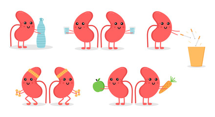 Set, collection of cartoon doodle kidney character, nice and smiling, doing different activities to keep themselves healthy. World kidney day illustrations.