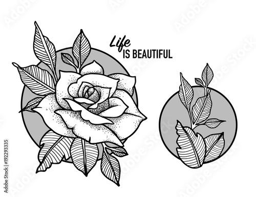 rose tattoo design blackwork tattoo flash highly detailed vector
