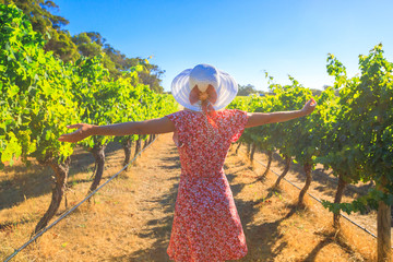 Australian vineyard. Carefree blonde woman with open arms among the rows of grapes, enjoys the harvest in Margaret River known as the wine region in Western Australia.