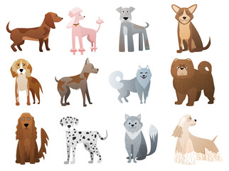 Vector Funny and cute cartoon dogs and puppy pet characters set.