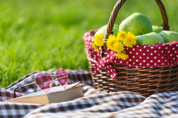 picnic basket and blanket