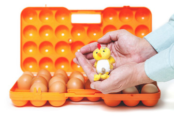 Yellow chick sitting on his hands over container with eggs
