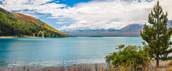 On the shore of Lake Tekapo fringed by the Southern Alps in Canterbury, New Zealand