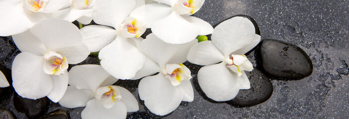 Spa stones and white orchid.