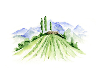 Foto auf Leinwand Weiß Abstract landscape with vineyard / Watercolor illustration, mountain landscape with fields