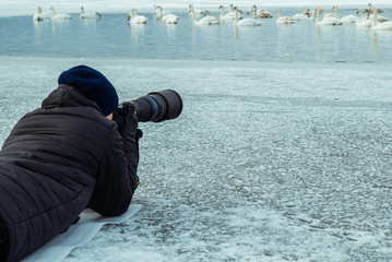 man take picture of swans on winter lake
