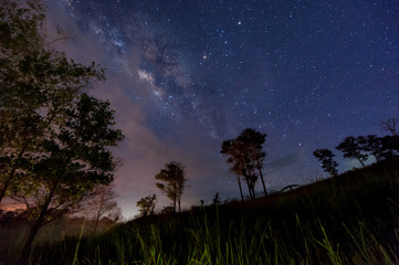 starry night sky with Milky way. image contain soft focus, blur and noise as night photo required high iso and long expose.