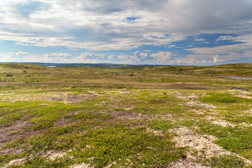 Ingelijste posters Poolcirkel Tundra landscape in the north of Russia