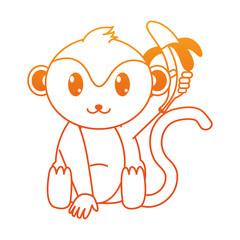 orange line adorable monkey wild animal with banana in the hand