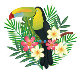 tropical and exotics flowers and leafs vector illustration design