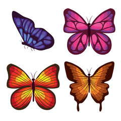 beautiful butterflies flying set vector illustration design