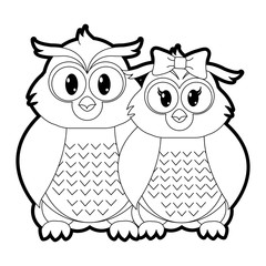 outline owl couple cute animal together