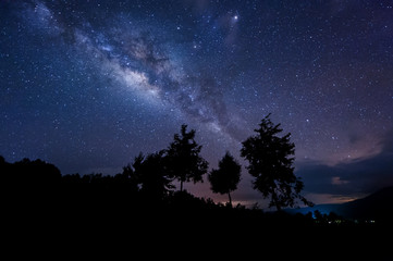 milky way rise above trees. image content soft focus, blur and noise due to long expose and high iso.