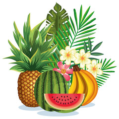 tropical garden with fruits vector illustration design fruits, leaves and flowers, summer and exotic concept