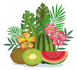tropical garden with kiwi and watermelon vector illustration design fruits, leaves and flowers, summer and exotic concept