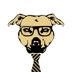 Hipster American Pit Bull Terrier with necktie and glasses vector illustration