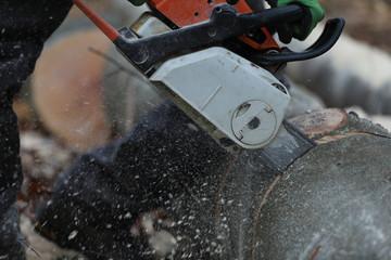 Kaminholz Brennholz Holzfäller sagt Holz mit der Motorsäge
