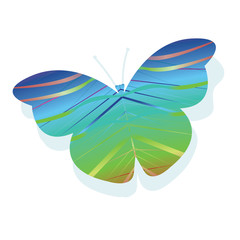 Vector abstract butterfly on white background.