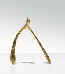 Gold wishbone on white background