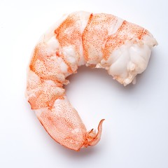 Close-up single peeled shrimp on white background