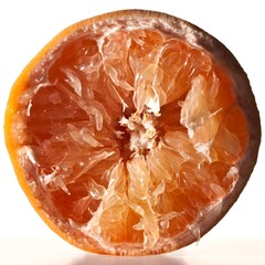 Close-up halved citrus fruit on white background