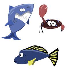 Sea, Fish, Crab, Shark