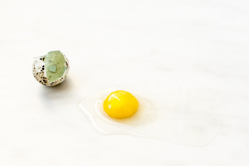 The shell and yolk of quail egg on the marble surface