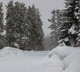 Snow falling on Breckenridge Colorado.