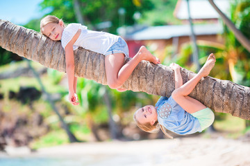 Adorable little girls at tropical beach having fun on palm tree during summer vacation. Kids enjoy their vacation like monkeys