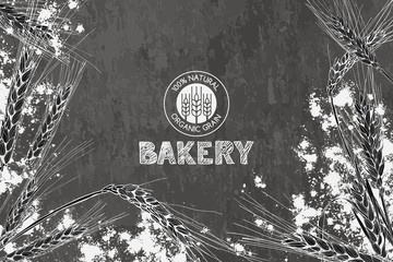 Vector bakery vintage background design. Hand drawn sketch illustration of wheat, flour on dark slate stone background. Concept for bakery menu, organic flour, grain and cereal products.