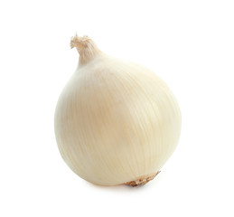 Fresh ripe onion on white background