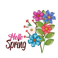 hello spring decorative design vector illustration art