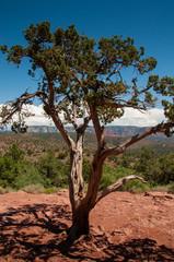 West Sedona, Arizona, United States