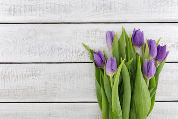 Frame of purple(violet) tulips on white rustic wooden background with copy space for message. Spring flowers. Greeting card for Valentine's Day, Woman's Day and Mother's Day. Top view
