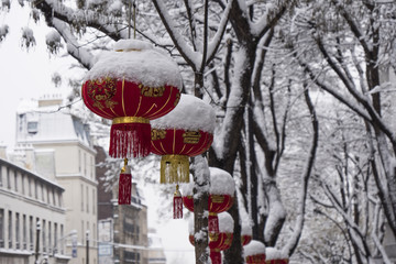 Christmas china tree covered with snow near the eiffel tower in paris