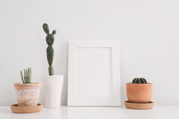 succulents or cactus in clay pots over white background on the shelf and mock up frame photo.