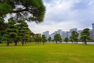 Scenery of Kokyogaien National Park in Tokyo, Japan