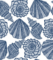 Shell Seamless Pattern. Graphic Sea Background in Hand Drawn Style for Surface Design Banner Web. Illustration
